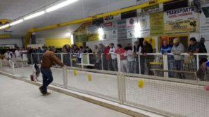 Instalaciones del Club Sarmiento